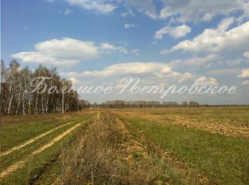 Коттеджный поселок Большое Петровское